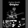 Andrea Braido - Origins